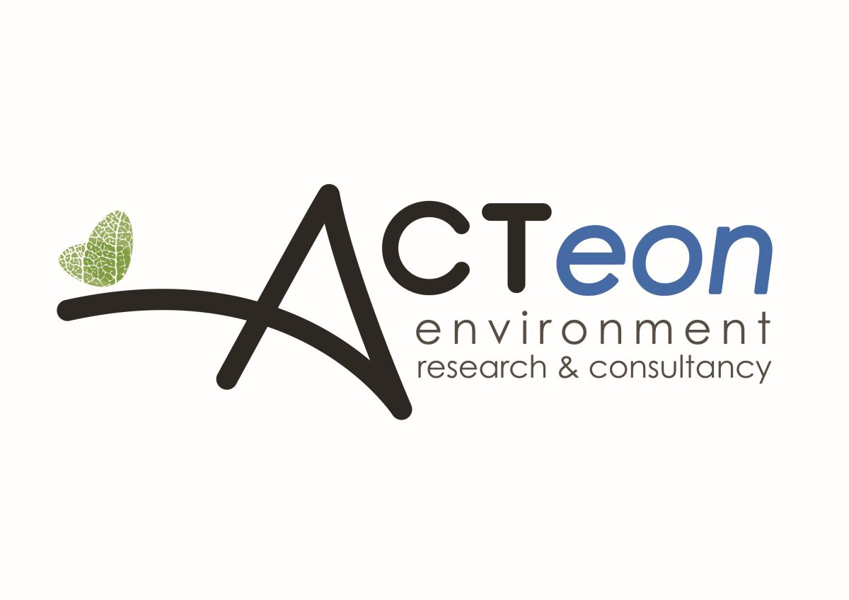 Internship Report: ACTeon Environment