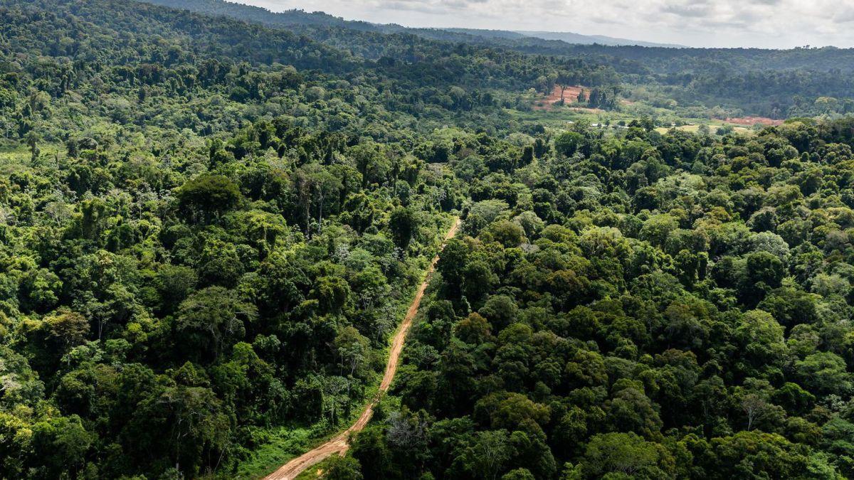 La montagne d'or: une défaite pour l'environnement