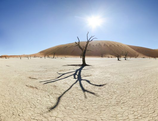 Desertification 1.Rose Mba Mebiame